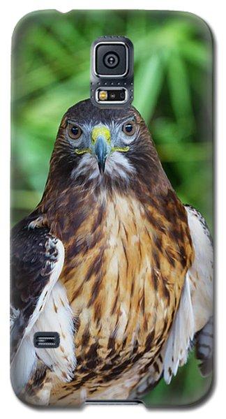 Galaxy S5 Case featuring the photograph Attitude by Arthur Dodd