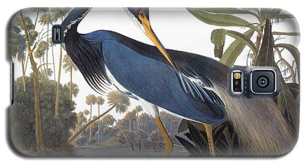 Audubon Galaxy S5 Case - Audubon Heron, 1827 by John James Audubon