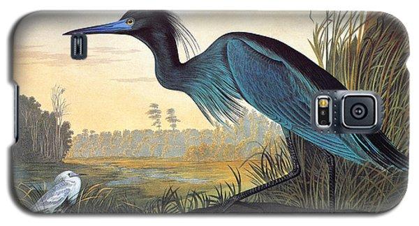 Little Blue Heron Galaxy S5 Case