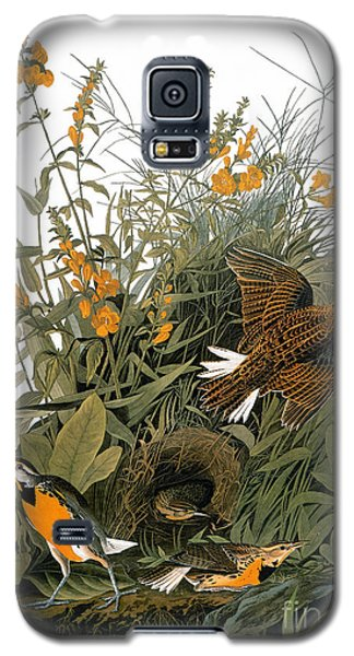 Audubon: Meadowlark Galaxy S5 Case by Granger