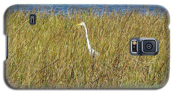 Audubon Park Sighting Galaxy S5 Case