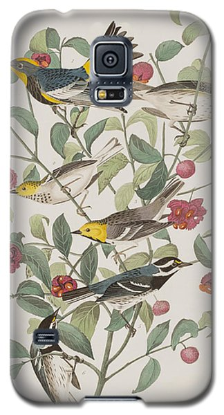 Audubons Warbler Hermit Warbler Black-throated Gray Warbler Galaxy S5 Case