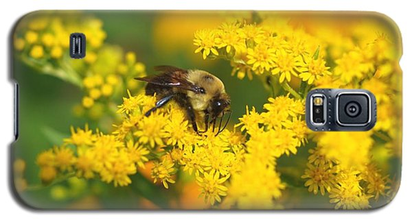 Galaxy S5 Case featuring the photograph August Bee by Susan  Dimitrakopoulos