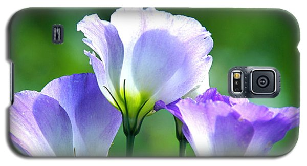 Galaxy S5 Case featuring the photograph August Echoes by Byron Varvarigos