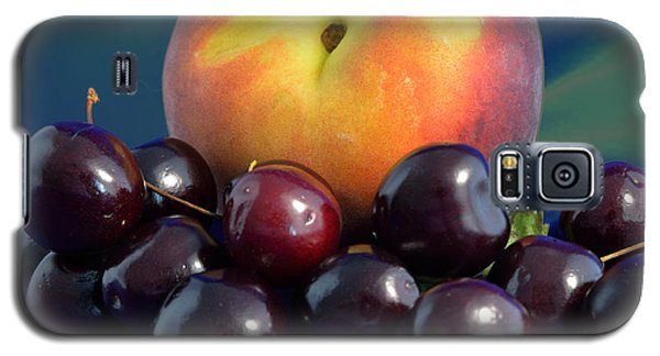 August Fruits Galaxy S5 Case