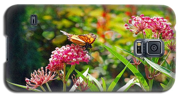 August Monarch Galaxy S5 Case