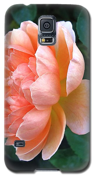 Galaxy S5 Case featuring the photograph August Rose 09 by Joyce Dickens