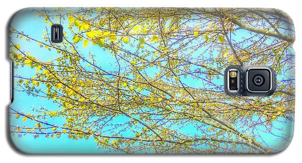 Galaxy S5 Case featuring the photograph  Aura Of Springtime by Connie Handscomb