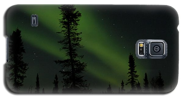 Aurora Borealis The Northern Lights Interior Alaska Galaxy S5 Case by Sharon Mau