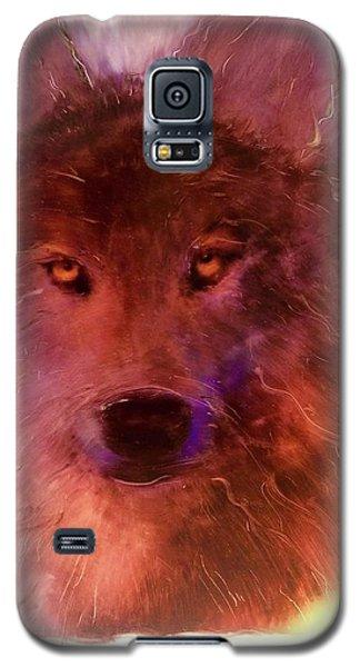 Aurora Rising Galaxy S5 Case by FeatherStone Studio Julie A Miller