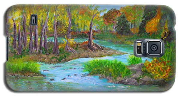 Ausable River Galaxy S5 Case