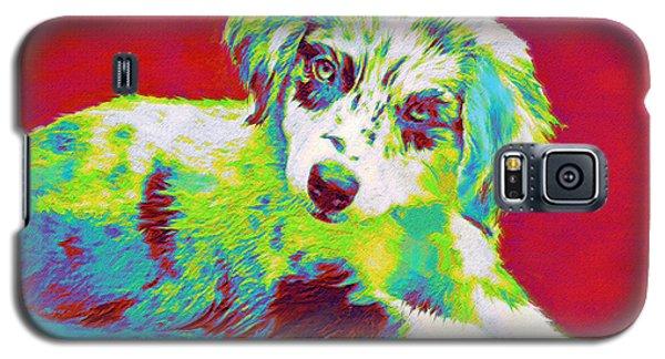 Aussie Puppy Galaxy S5 Case by Jane Schnetlage