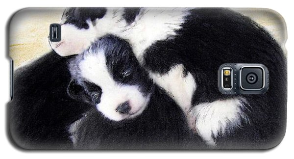 Australian Cattle Dog Puppies Galaxy S5 Case