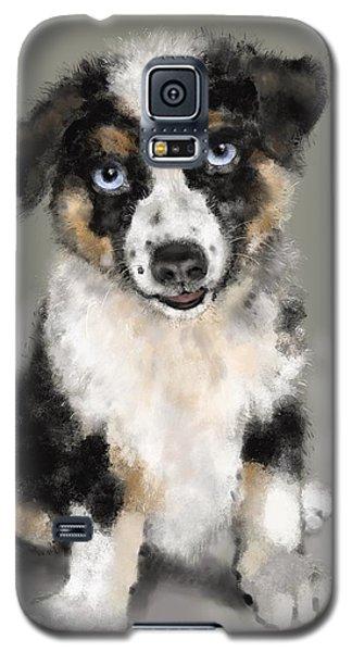 Australian Shepherd Pup Galaxy S5 Case