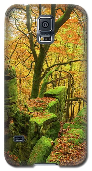 Galaxy S5 Case featuring the photograph Automnal Glow by Maciej Markiewicz
