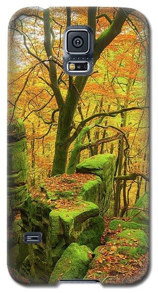 Automnal Glow Galaxy S5 Case by Maciej Markiewicz