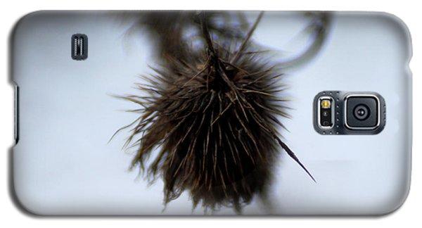 Autumn 2 Galaxy S5 Case