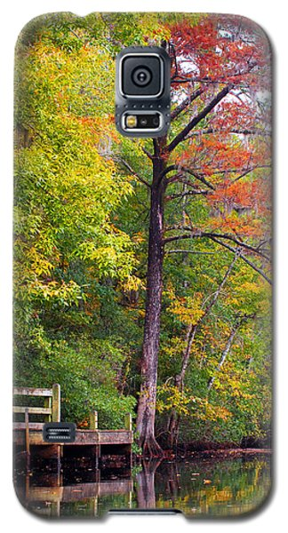 Autumn Along Brices Creek Galaxy S5 Case by Bob Decker