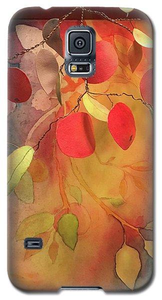Autumn Apples 3d Galaxy S5 Case
