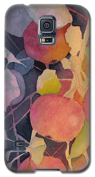 Autumn Apples Galaxy S5 Case