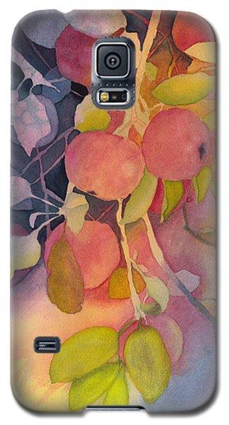 Autumn Apples Full Painting Galaxy S5 Case
