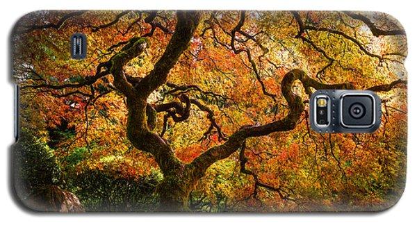 Autumn Arrival Galaxy S5 Case