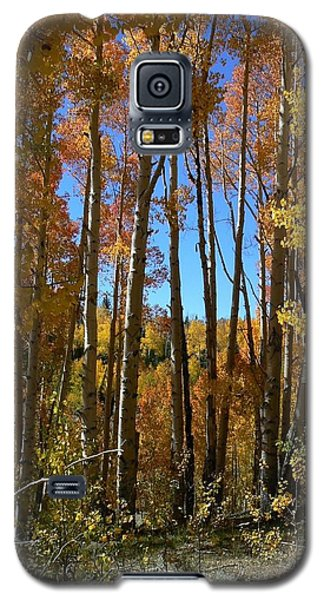 Galaxy S5 Case featuring the photograph Autumn Aspen Grove Dixie National Forest Utah by Deborah Moen