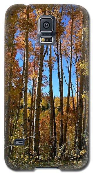 Autumn Aspen Grove Dixie National Forest Utah Galaxy S5 Case