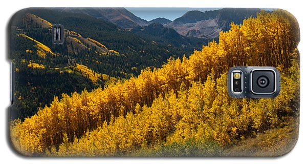 Autumn Aspen Near Castle Creek Galaxy S5 Case
