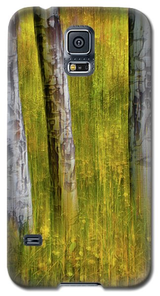 Galaxy S5 Case featuring the photograph Autumn Aspen Recollections by John De Bord