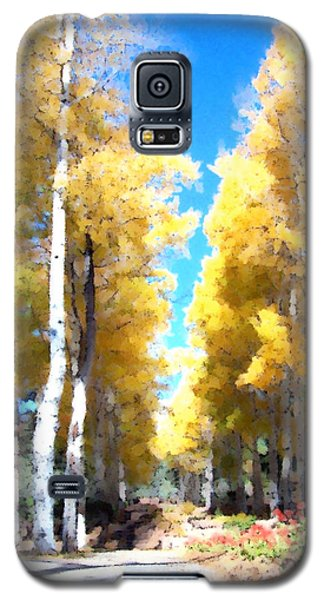 Autumn Aspens Galaxy S5 Case
