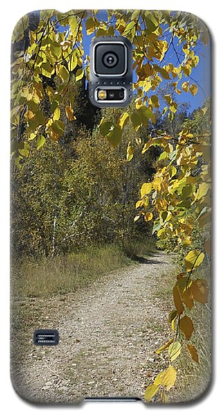 Autumn At Iron Creek Galaxy S5 Case