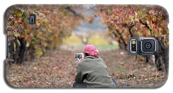 Autumn At Lachish Vineyards 1 Galaxy S5 Case by Dubi Roman