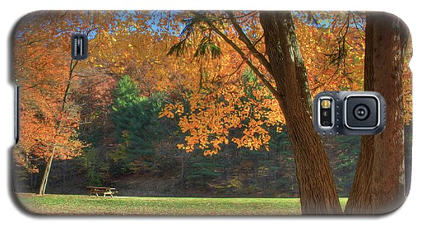 Galaxy S5 Case featuring the photograph Autumn At Lykens Glen by Lori Deiter