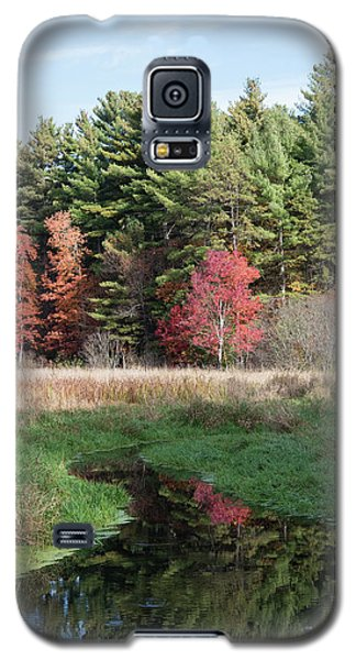 Autumn At The River Galaxy S5 Case