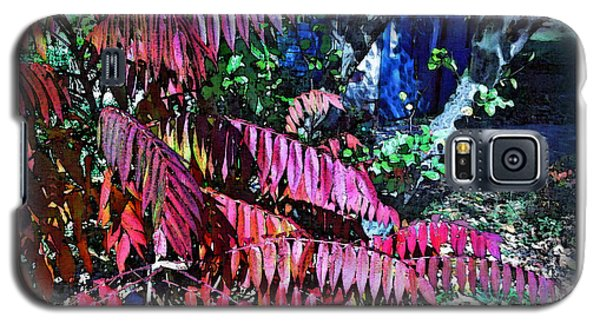 Galaxy S5 Case featuring the photograph Autumn At The Taverne by Joan  Minchak