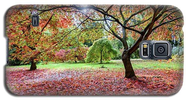 Autumn At Westonbirt Arboretum Galaxy S5 Case