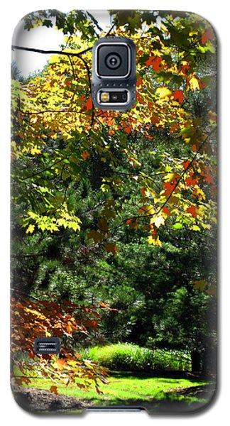 Galaxy S5 Case featuring the photograph Autumn Backyard by Joan  Minchak