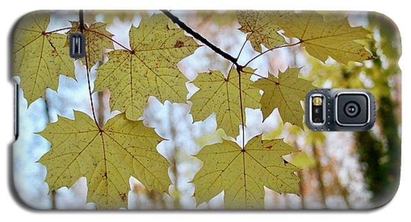 Autumn Beauty Galaxy S5 Case