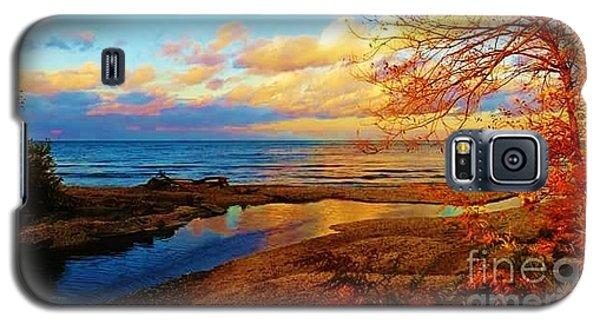 Autumn Beauty Lake Ontario Ny Galaxy S5 Case