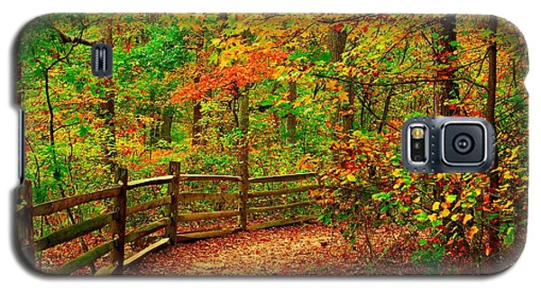 Autumn Bend - Allaire State Park Galaxy S5 Case