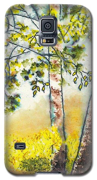 Autumn Birch Trees Galaxy S5 Case