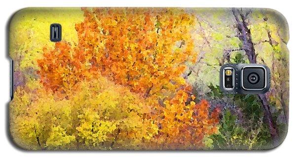 Autumn Blaze  Galaxy S5 Case