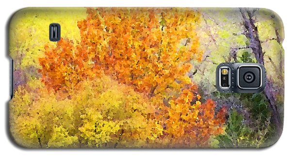 Autumn Blaze  Galaxy S5 Case