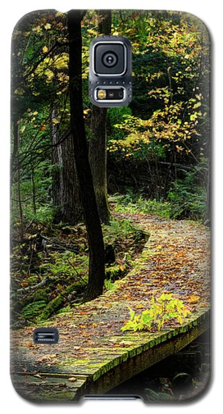 Autumn Boardwalk Galaxy S5 Case