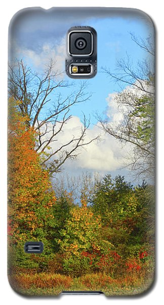 Autumn Breeze Nature Art Galaxy S5 Case by Robyn King