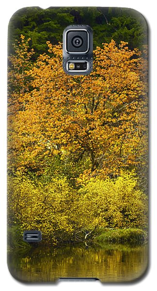 Galaxy S5 Case featuring the photograph Autumn Brilliance by Diane Schuster