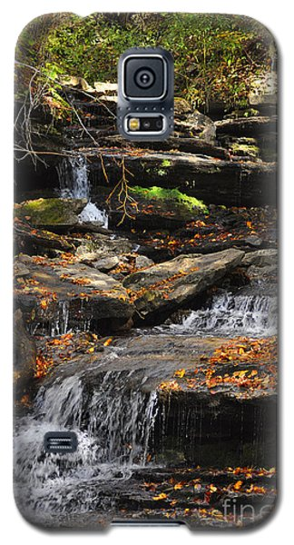 Galaxy S5 Case featuring the photograph Autumn Brook by Diane E Berry