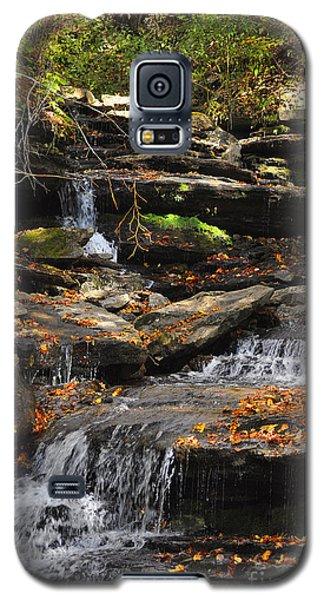 Autumn Brook Galaxy S5 Case by Diane E Berry