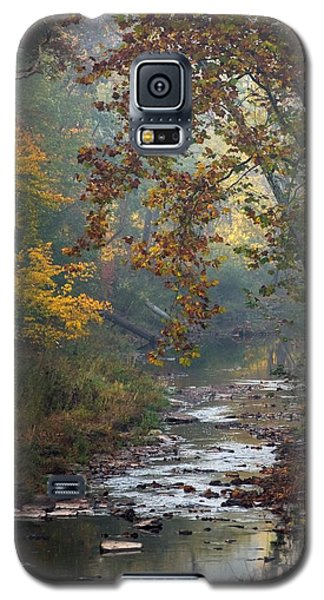 Galaxy S5 Case featuring the photograph Autumn By The Creek by Elsa Marie Santoro